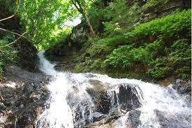 縁結びの滝